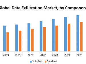 Global Data Exfiltration Market
